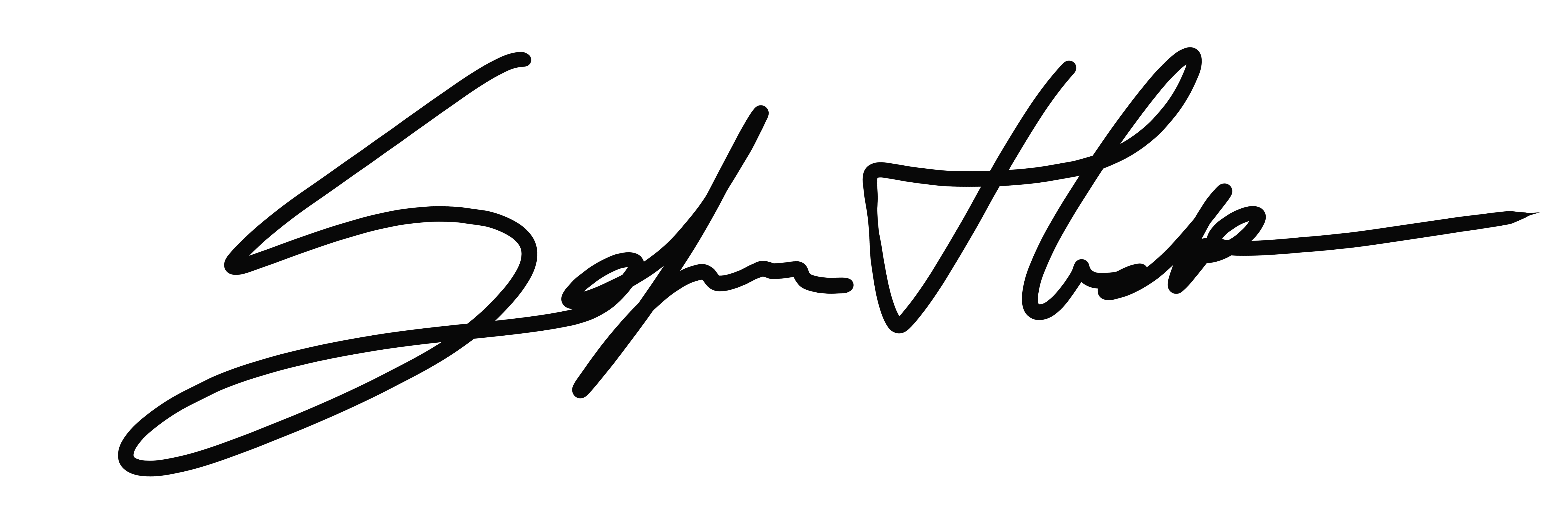 Firma 3 copia